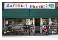 Our Flower Shop in Hampshire